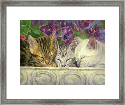 Group Nap Framed Print by Lucie Bilodeau