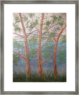Group Of Three Framed Print by Rick Silas