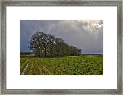 Group Of Trees Against A Dark Sky Framed Print