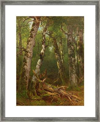 Group Of Trees Framed Print by Asher Brown Durand