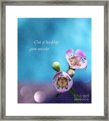 Grow Miracles Framed Print by Krissy Katsimbras