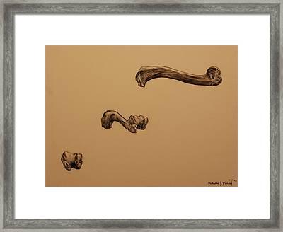 Growing Bone Framed Print