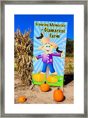Growing Memories Framed Print by Colleen Kammerer