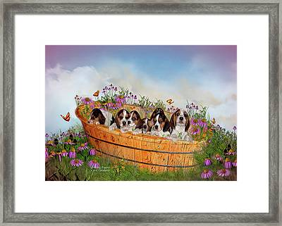 Growing Puppies Framed Print