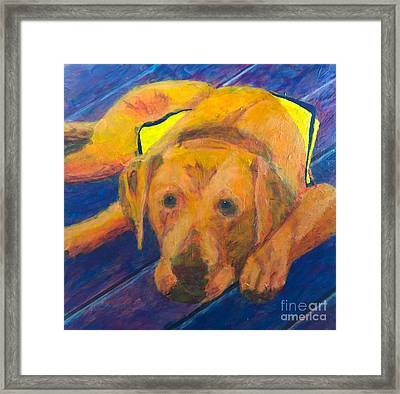Growing Puppy Framed Print