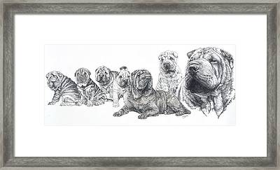 Framed Print featuring the drawing Growing Up Chinese Shar-pei by Barbara Keith