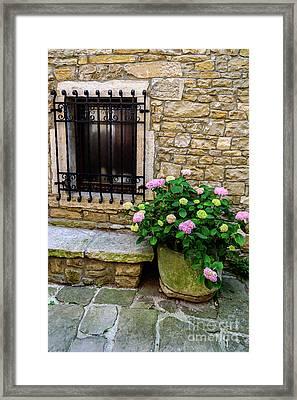 Groznjan Istrian Hill Town Stonework And Flowerpot - Istria, Croatia Framed Print
