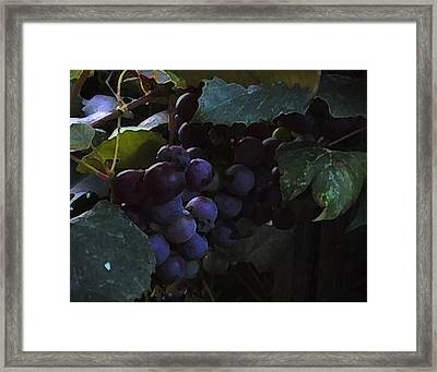 Grrrrapes Framed Print by Ross Powell
