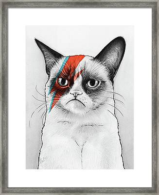 Grumpy Cat As David Bowie Framed Print by Olga Shvartsur