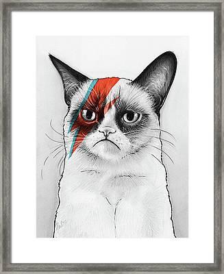 Grumpy Cat As David Bowie Framed Print