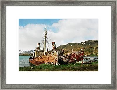 Grytviken Ghosts Framed Print