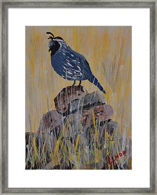 Guard Bird Framed Print