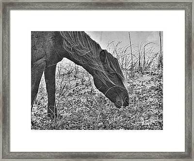 Guardian 2 Framed Print