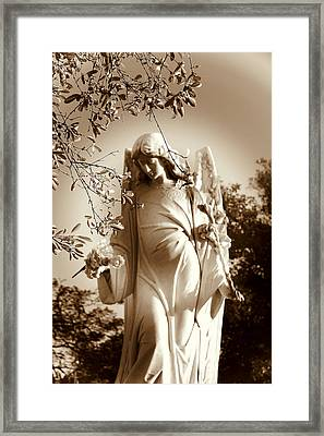 Guardian Angel Bw Framed Print by Susanne Van Hulst