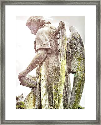 Guardian Of The Soul Framed Print by JAMART Photography