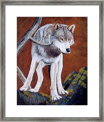Guardian Of The Den Framed Print by Lorraine Foster