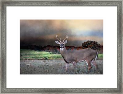 Guardian Of The West Field Framed Print