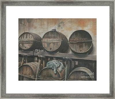 Guardian Of The Wine Cellar Framed Print