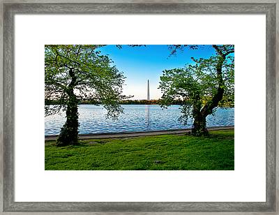 Guardians Of Washington Framed Print by Greg Fortier