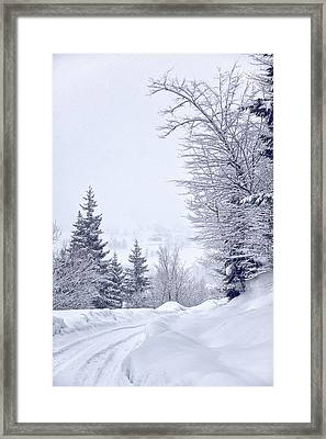 Guarding The Road Framed Print