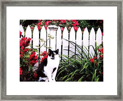 Guarding The Rose Garden Framed Print by Angela Davies