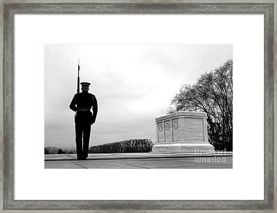 Guarding The Unknown Soldier Framed Print by Olivier Le Queinec
