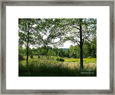 Beyound The Trees Framed Print