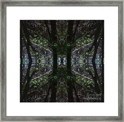 Guards Of The Forest Framed Print