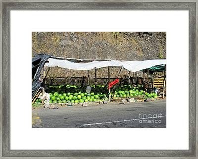 Guatemala Stand 2 Framed Print by Randall Weidner