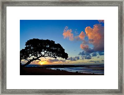 Guava Sunrise In Kapa'a Framed Print by Solveig Swenson