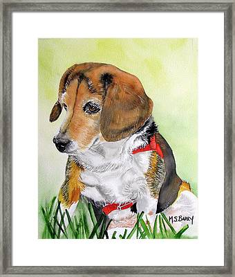 Gucci 1 Framed Print by Maria Barry