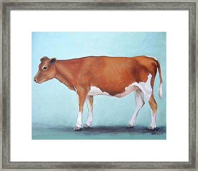 Guernsey Cow Standing Light Teal Background Framed Print