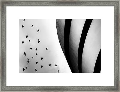 Guggenheim Museum With Pigeons Framed Print