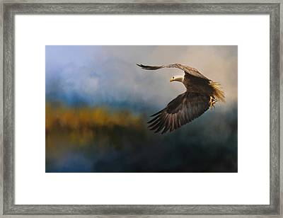 Guided By The Light Framed Print