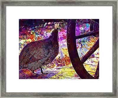 Guinea Fowl Guinea Fowl Chicken  Framed Print