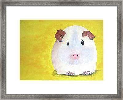 Guinee Pig Framed Print