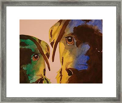Guiness Green And Bella Blue Framed Print