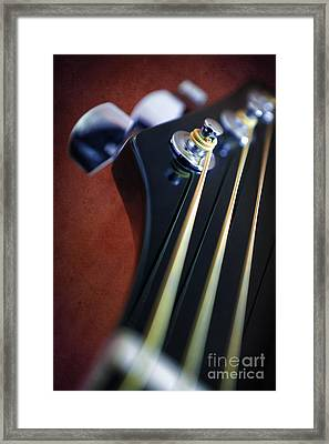 Guitar Head Stock Framed Print by Carlos Caetano