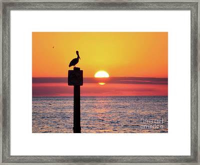 Gulf Coast Enchantment Framed Print