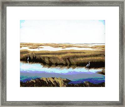Gulf Coast Florida Marshes I Framed Print