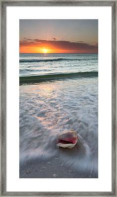 Framed Print featuring the photograph Gulf Coast Sunset  by Patrick Downey