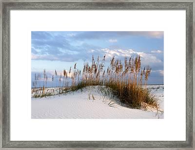 Gulf Dunes Framed Print