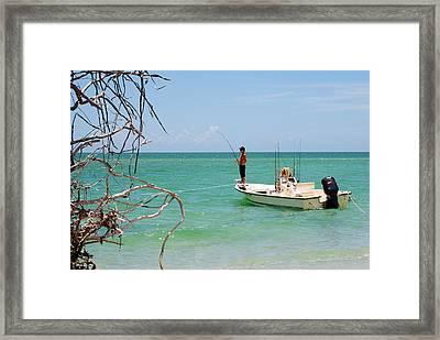 Gulf Fisherman Framed Print by Steven Scott
