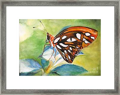 Framed Print featuring the painting Gulf Fritillary Butterfly by Sibby S