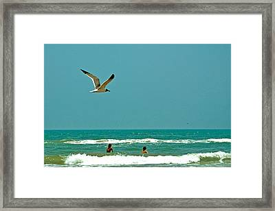 Gulf Of Mexico From Padre Island Framed Print by Jorge Gaete