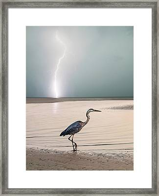 Gulf Port Storm Framed Print