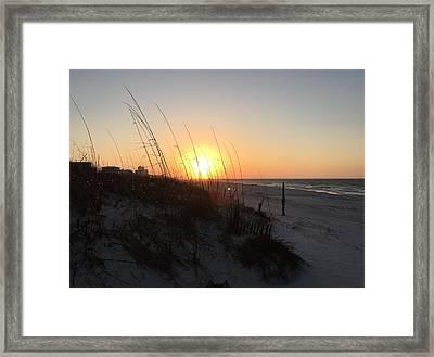 Gulf Shores Sunrise  Framed Print