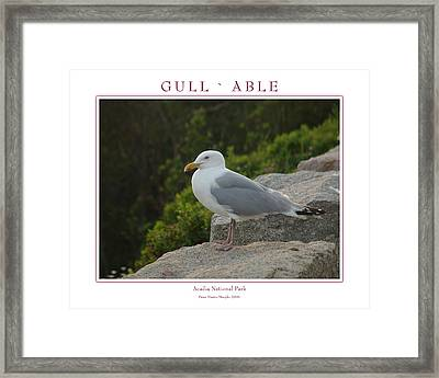 Gull Able Framed Print by Peter Muzyka