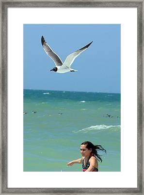 Gull And Girl Framed Print