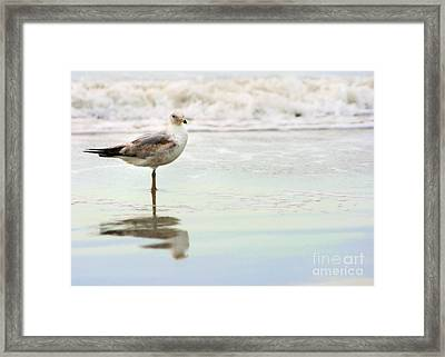 Land Sea And Sky Series 4 Framed Print